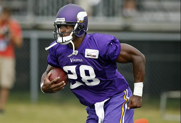 Minnesota Vikings running back Adrian Peterson has been suspended for the remainder of the season.