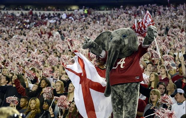 Yes, These Bama Fans On ESPN's College GameDay Have An Elephant Statue In Their Home