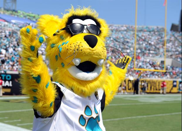 Jacksonville Jaguars Mascot Bungee Jumped Into Their Stadium Today
