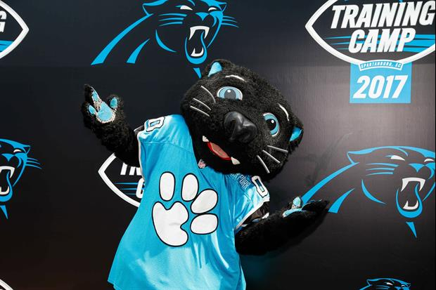 WR Robby Anderson Baffled By Existence of Panthers Mascot 'Sir Purr'
