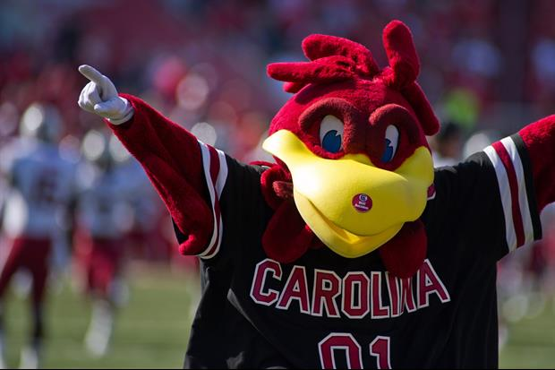 Here's The Giant Cock Statute University of South Carolina Spent $1 Million On