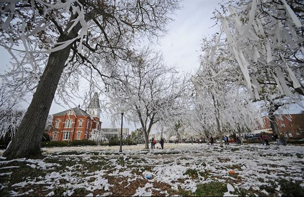 Harvey Updyke Finally Speaks After Doing Time For Poisoning Auburn's Famous Oak Trees